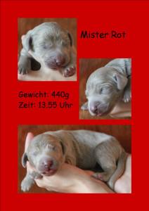 MisterRot